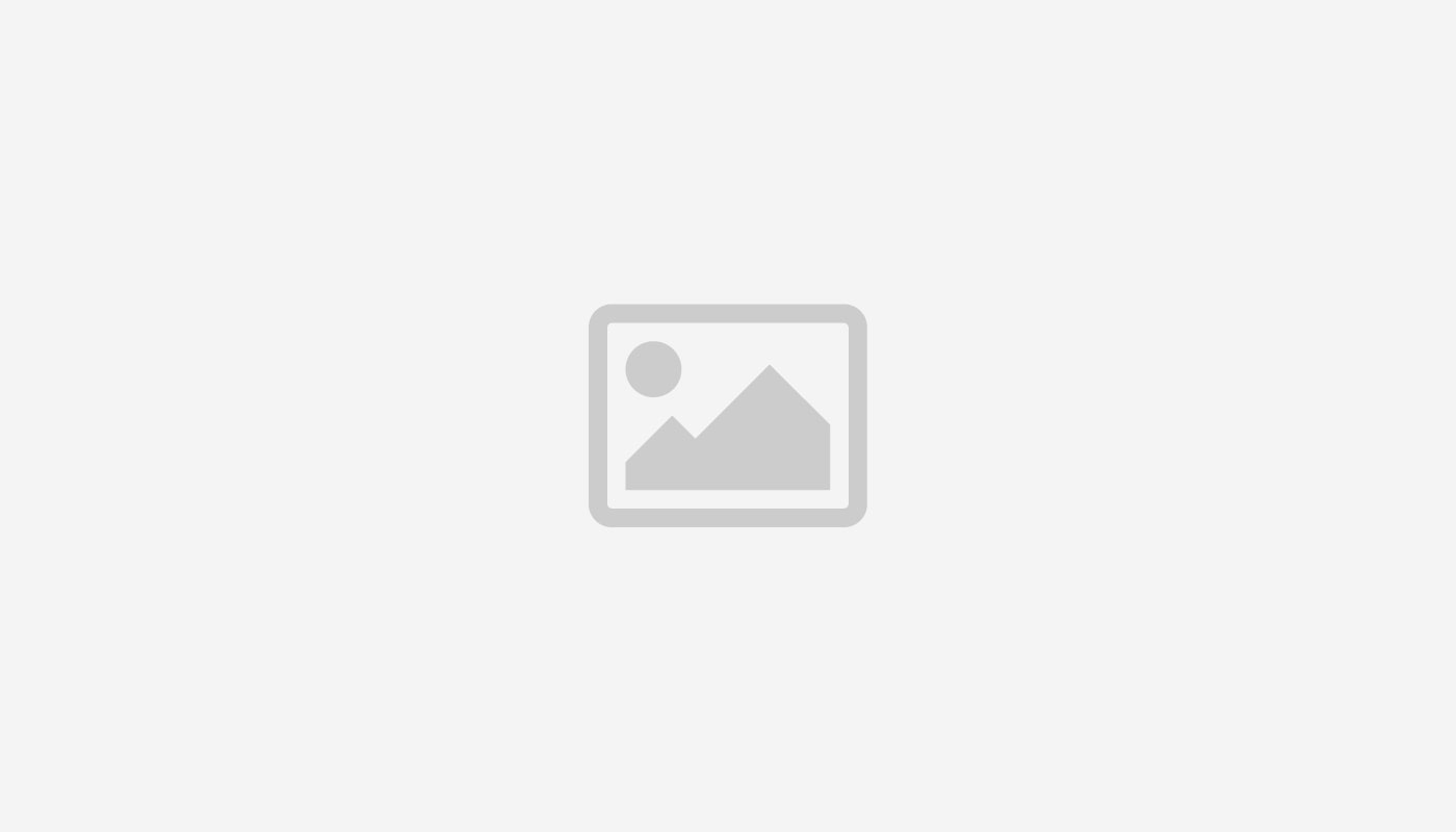 dummy image landscape - Portfolio